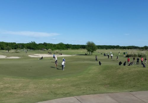 A large group of golf players on the green with trees in the far distance