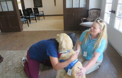 Triton the comfortdog being hugged by a woman